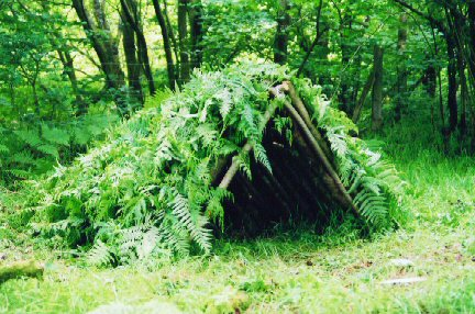 Use it to Build Shelter